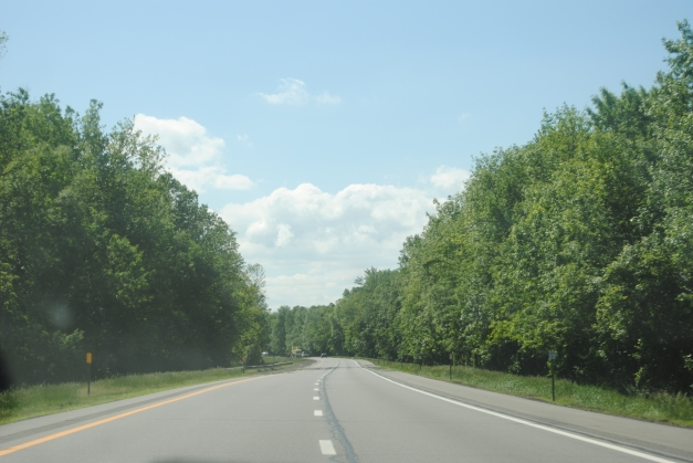 The road, for much of the drive through New York (this was a long drive, by the way...) was surrounded by trees. Cool. It was very New England, despite the fact that New York is not indeed in New England.